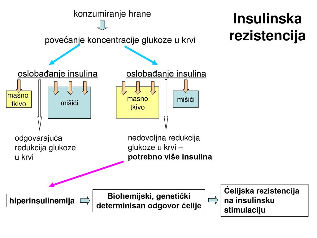 šta je inzulinska rezistencija